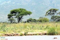Езерото Чамо
