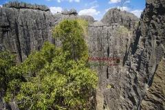 Парк Цинги Мадагаскар