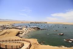 Паракас Перу