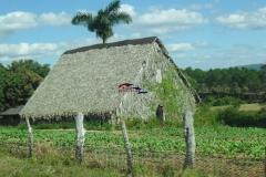 Винялес Куба