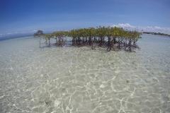 Екскурзия Бохол Филипини