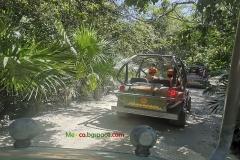 Адвенчър Парк Мексико