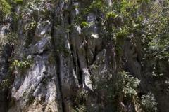 Винялес Пещерата на Индианците