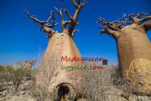 Мадагаскар екскурзия